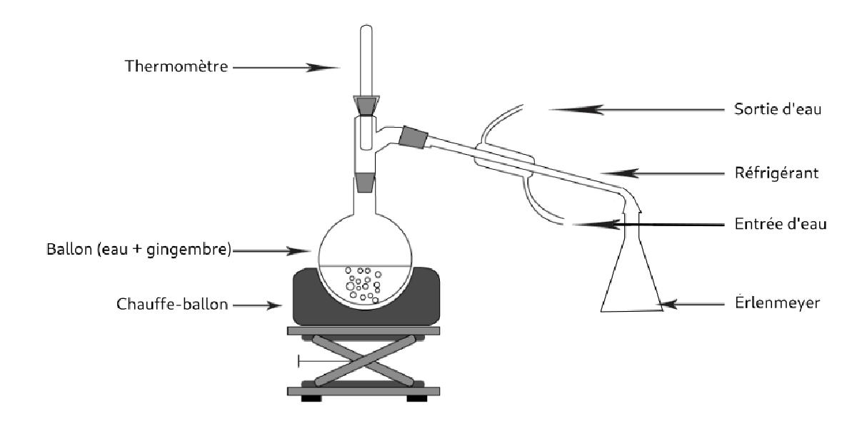 schéma d'une hydrodistillation
